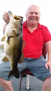 Nice Toho bass