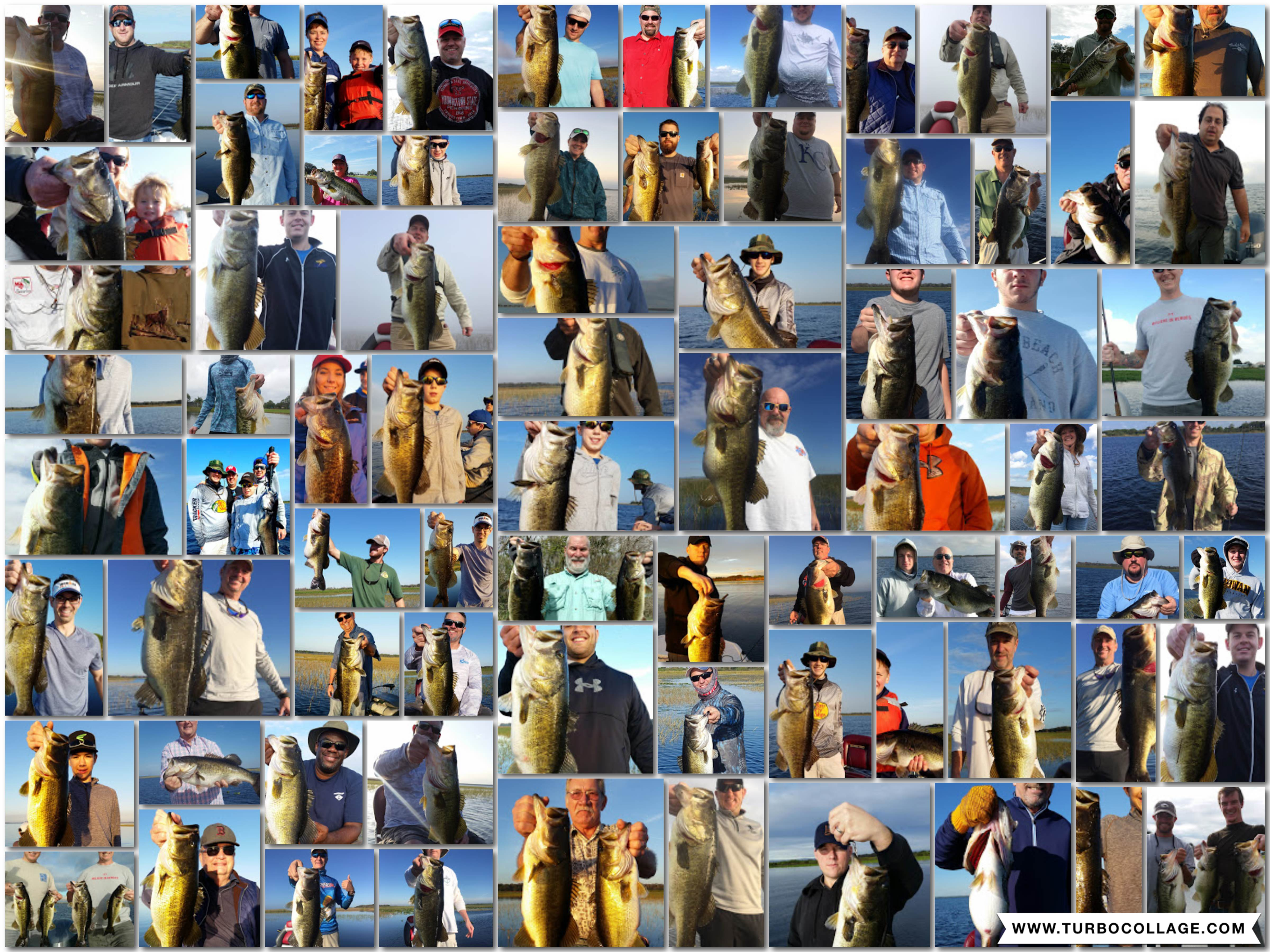Collage of trophy bass caught this yea