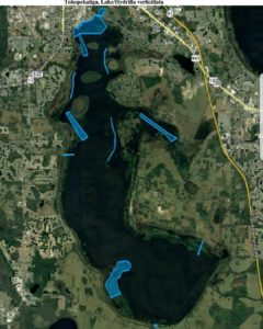 Lake Toho October 2018 hydrilla spray map